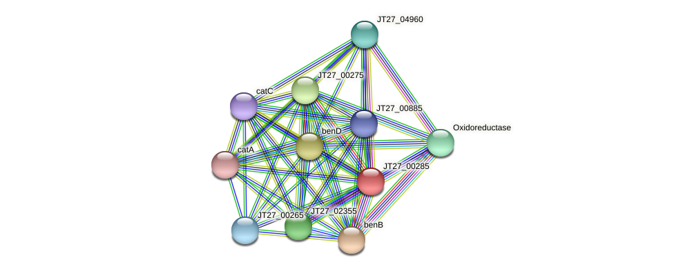 JT27_00285 protein (Alcaligenes faecalis) - STRING interaction network