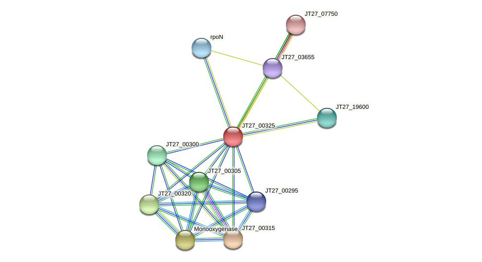 JT27_00325 protein (Alcaligenes faecalis) - STRING interaction network