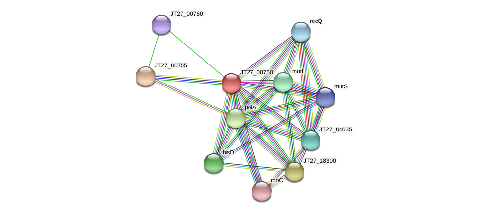 JT27_00750 protein (Alcaligenes faecalis) - STRING interaction network