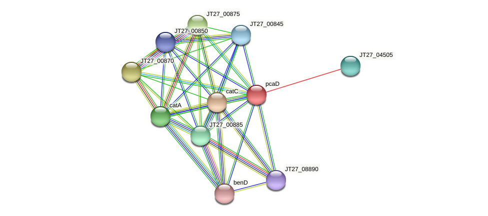 JT27_00865 protein (Alcaligenes faecalis) - STRING interaction network