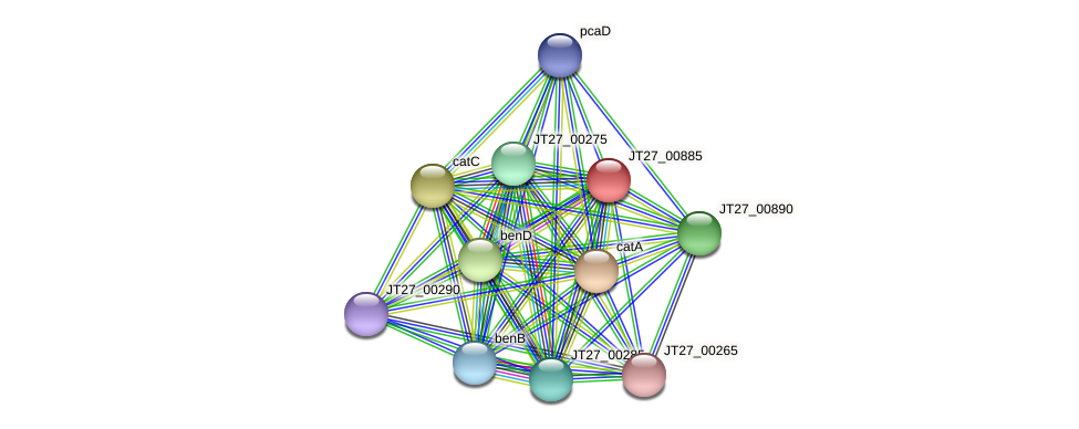 JT27_00885 protein (Alcaligenes faecalis) - STRING interaction network