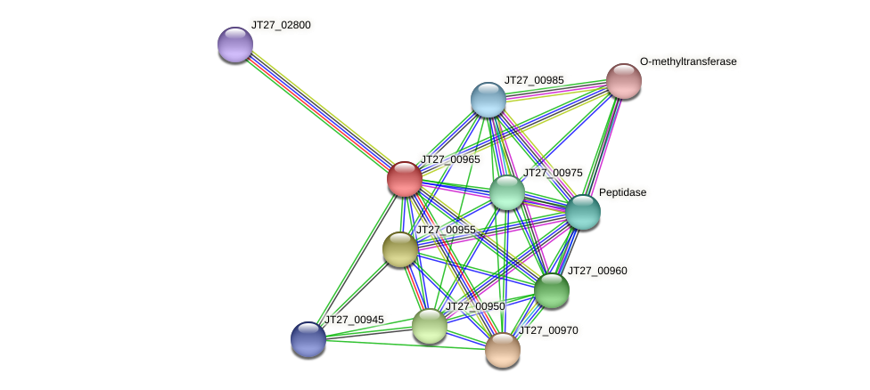 JT27_00965 protein (Alcaligenes faecalis) - STRING interaction network