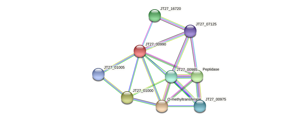 JT27_00990 protein (Alcaligenes faecalis) - STRING interaction network
