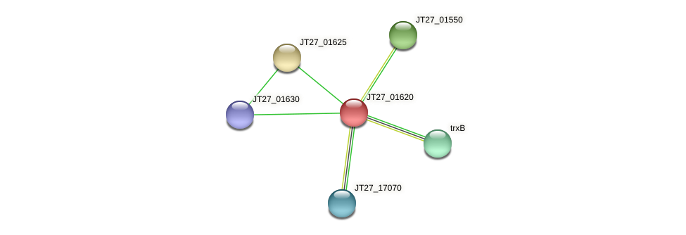 JT27_01620 protein (Alcaligenes faecalis) - STRING interaction network
