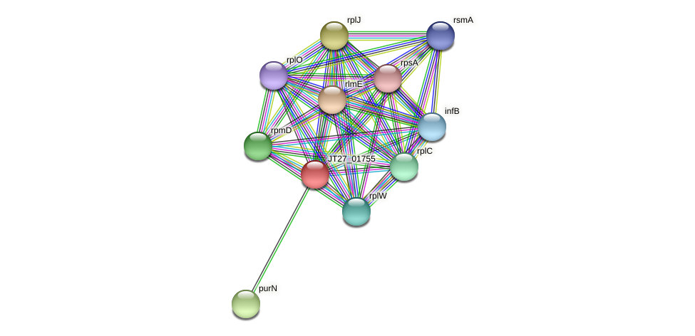 JT27_01755 protein (Alcaligenes faecalis) - STRING interaction network