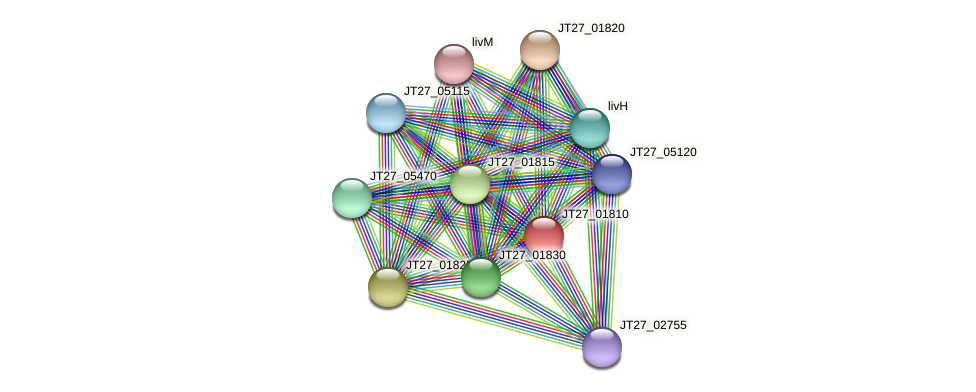 JT27_01810 protein (Alcaligenes faecalis) - STRING interaction network