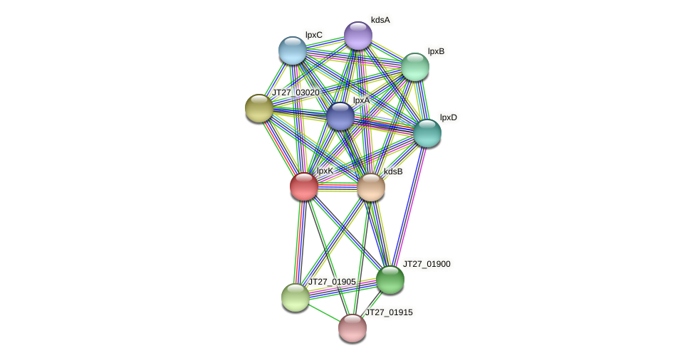 lpxK protein (Alcaligenes faecalis) - STRING interaction network