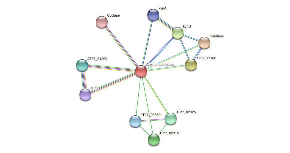 JT27_02320 protein (Alcaligenes faecalis) - STRING interaction network