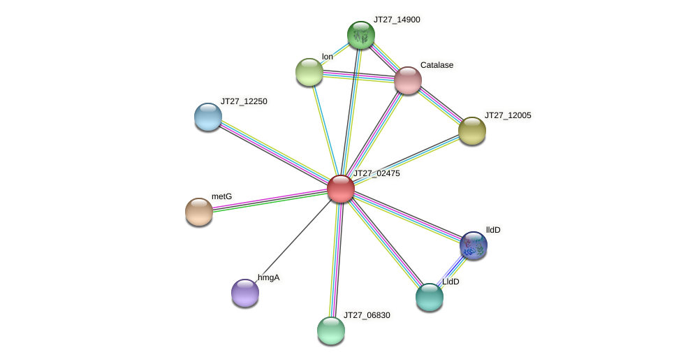 JT27_02475 protein (Alcaligenes faecalis) - STRING interaction network