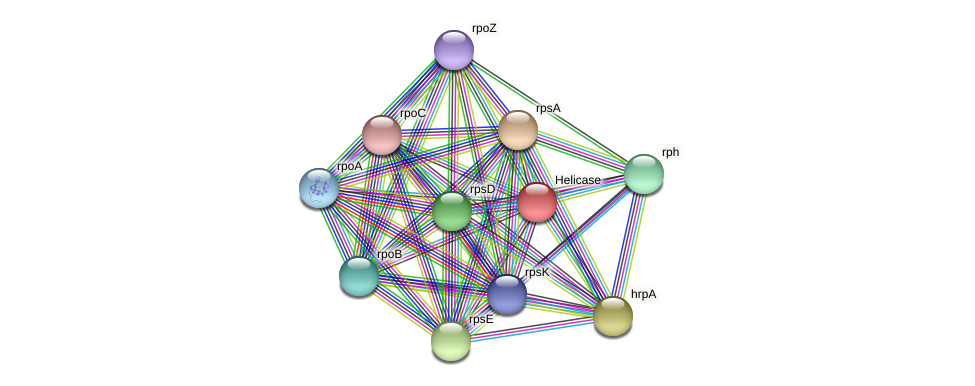 JT27_02680 protein (Alcaligenes faecalis) - STRING interaction network