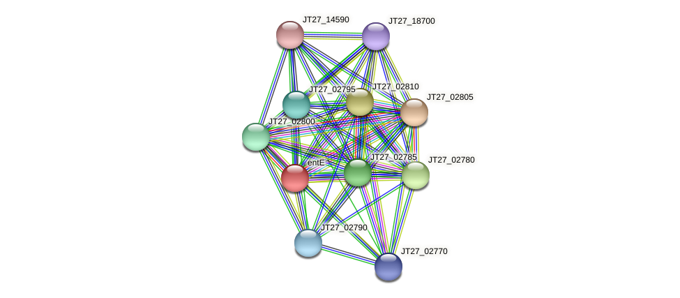 entE protein (Alcaligenes faecalis) - STRING interaction network