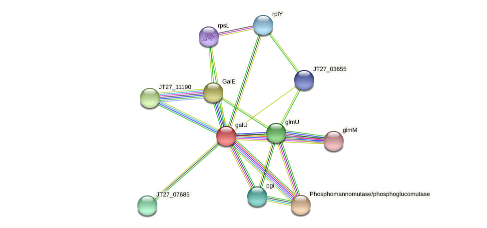 JT27_03010 protein (Alcaligenes faecalis) - STRING interaction network
