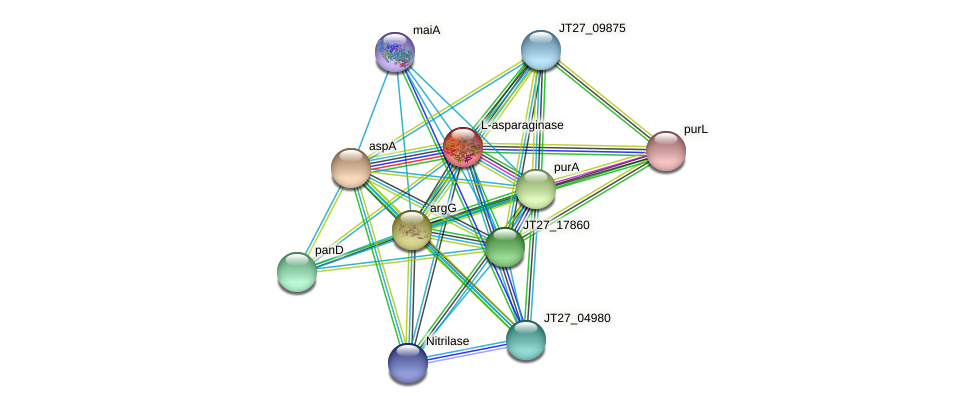 JT27_03175 protein (Alcaligenes faecalis) - STRING interaction network