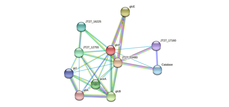 glcF protein (Alcaligenes faecalis) - STRING interaction network