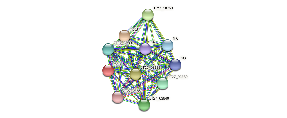 JT27_03645 protein (Alcaligenes faecalis) - STRING interaction network
