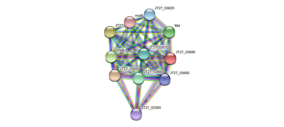 JT27_03680 protein (Alcaligenes faecalis) - STRING interaction network