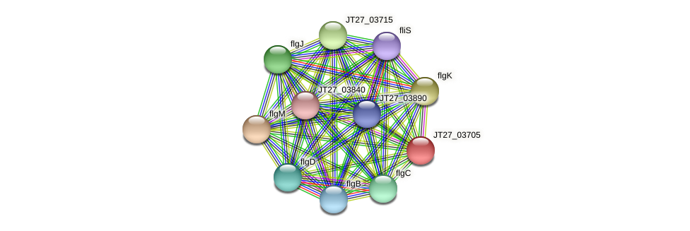 JT27_03705 protein (Alcaligenes faecalis) - STRING interaction network