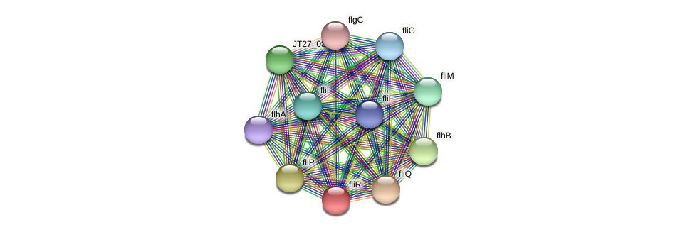 JT27_03800 protein (Alcaligenes faecalis) - STRING interaction network