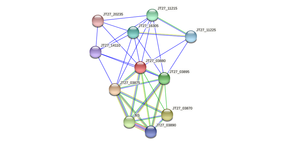 JT27_03880 protein (Alcaligenes faecalis) - STRING interaction network