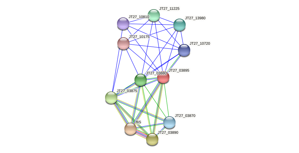 JT27_03895 protein (Alcaligenes faecalis) - STRING interaction network