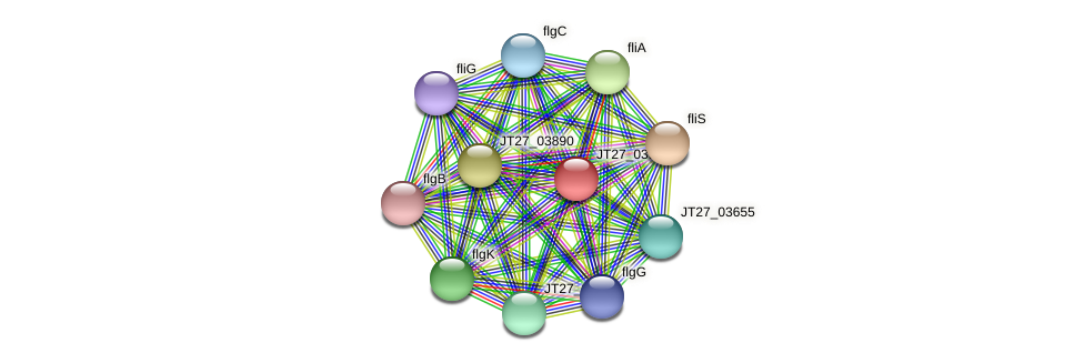 JT27_03915 protein (Alcaligenes faecalis) - STRING interaction network