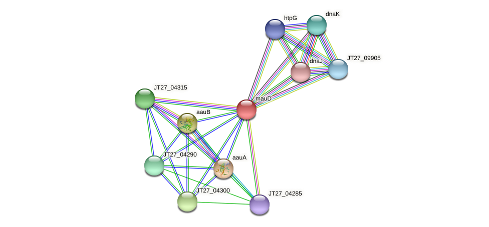 JT27_04305 protein (Alcaligenes faecalis) - STRING interaction network