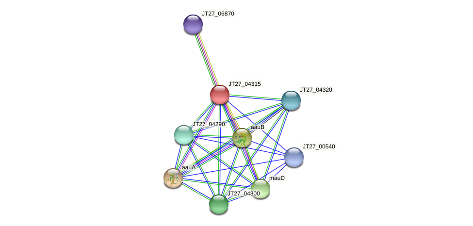 JT27_04315 protein (Alcaligenes faecalis) - STRING interaction network