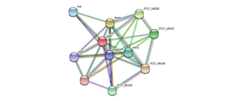 priA protein (Alcaligenes faecalis) - STRING interaction network