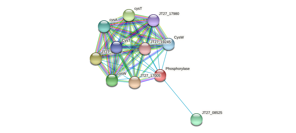 JT27_04455 protein (Alcaligenes faecalis) - STRING interaction network