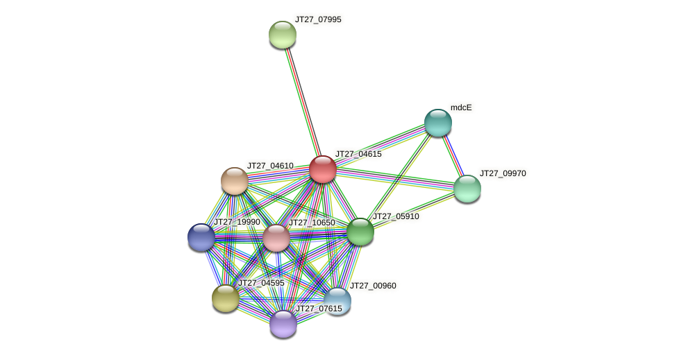 JT27_04615 protein (Alcaligenes faecalis) - STRING interaction network