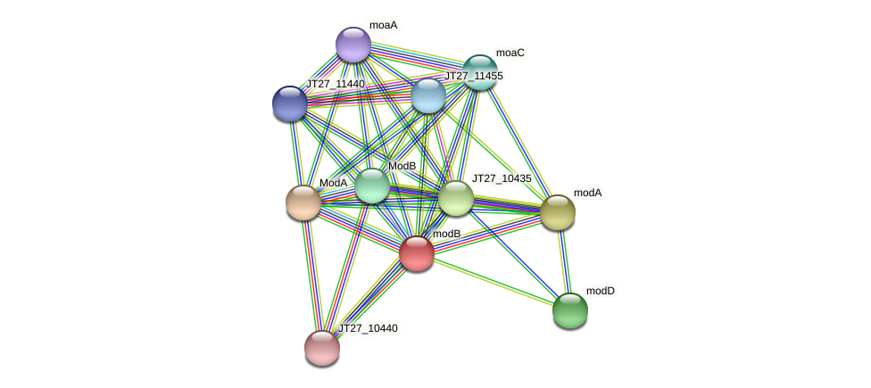 JT27_04710 protein (Alcaligenes faecalis) - STRING interaction network