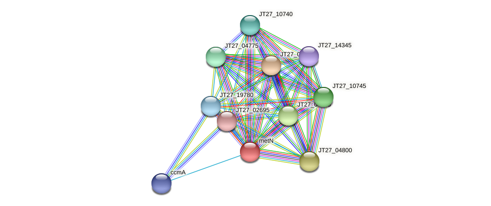 JT27_04795 protein (Alcaligenes faecalis) - STRING interaction network