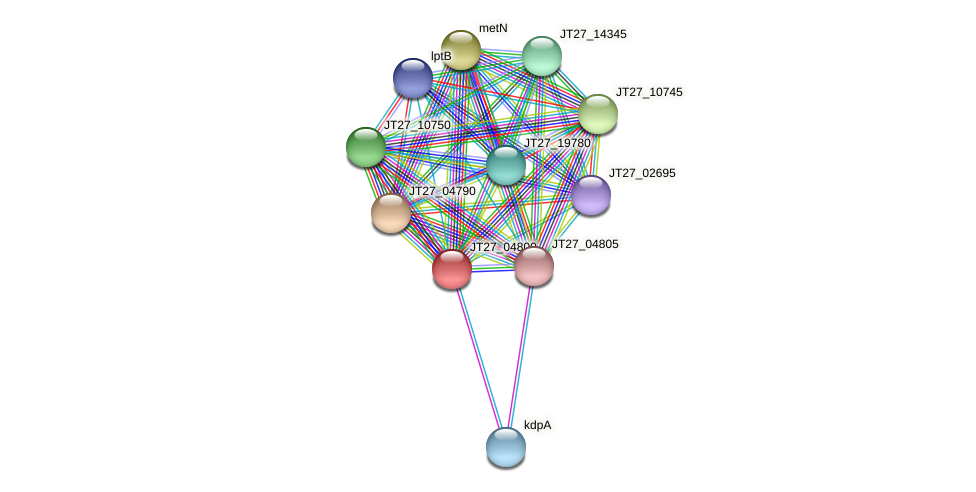 JT27_04800 protein (Alcaligenes faecalis) - STRING interaction network