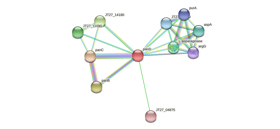 panD protein (Alcaligenes faecalis) - STRING interaction network