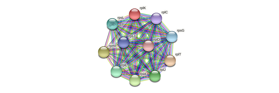 rplK protein (Alcaligenes faecalis) - STRING interaction network