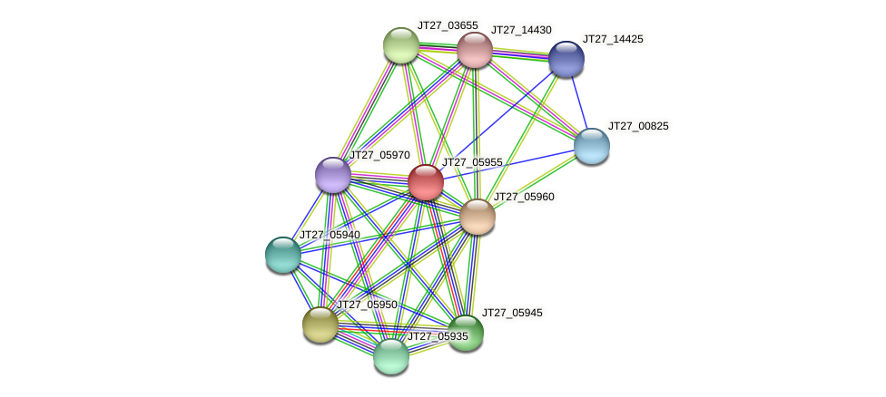 JT27_05955 protein (Alcaligenes faecalis) - STRING interaction network
