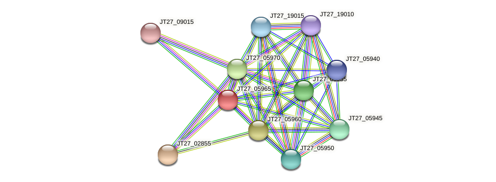 JT27_05965 protein (Alcaligenes faecalis) - STRING interaction network