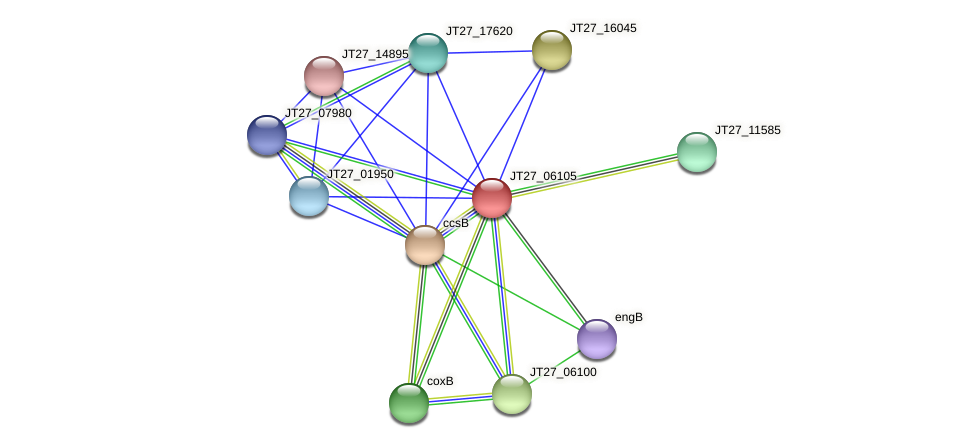 JT27_06105 protein (Alcaligenes faecalis) - STRING interaction network
