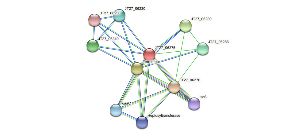 AFA_17790 protein (Alcaligenes faecalis) - STRING interaction network
