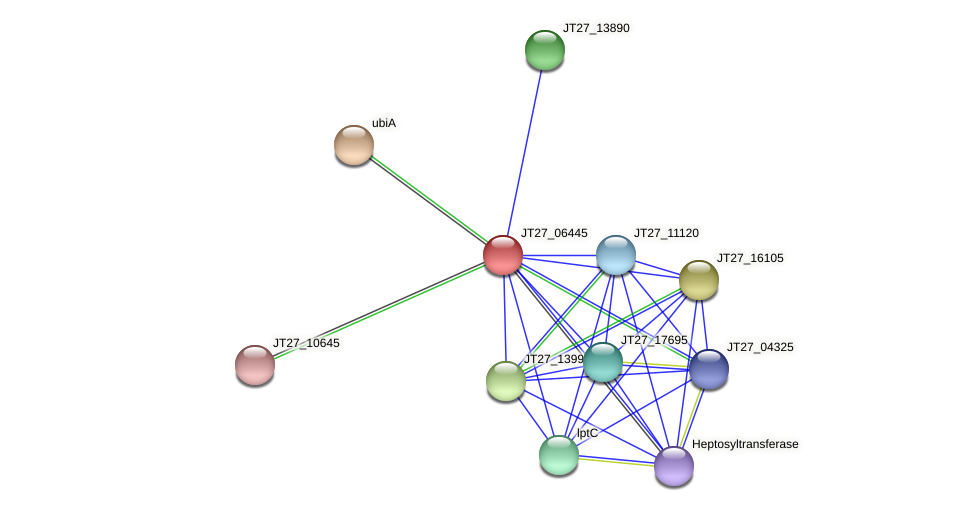 JT27_06445 protein (Alcaligenes faecalis) - STRING interaction network