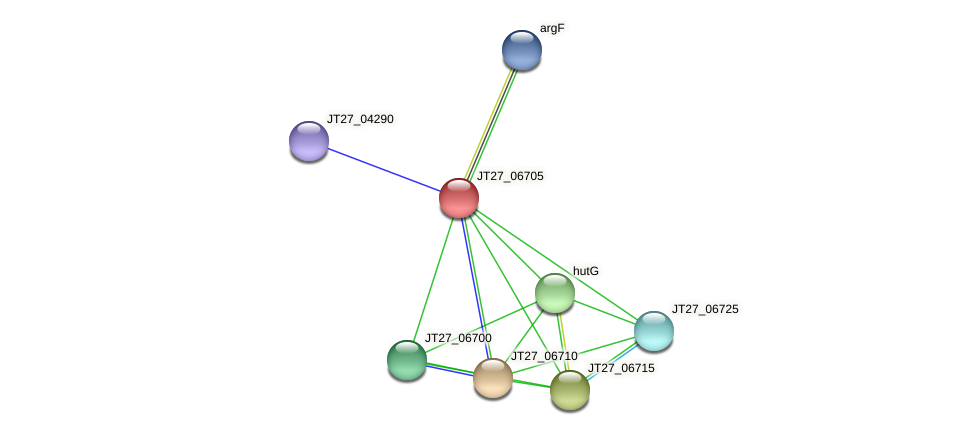 JT27_06705 protein (Alcaligenes faecalis) - STRING interaction network