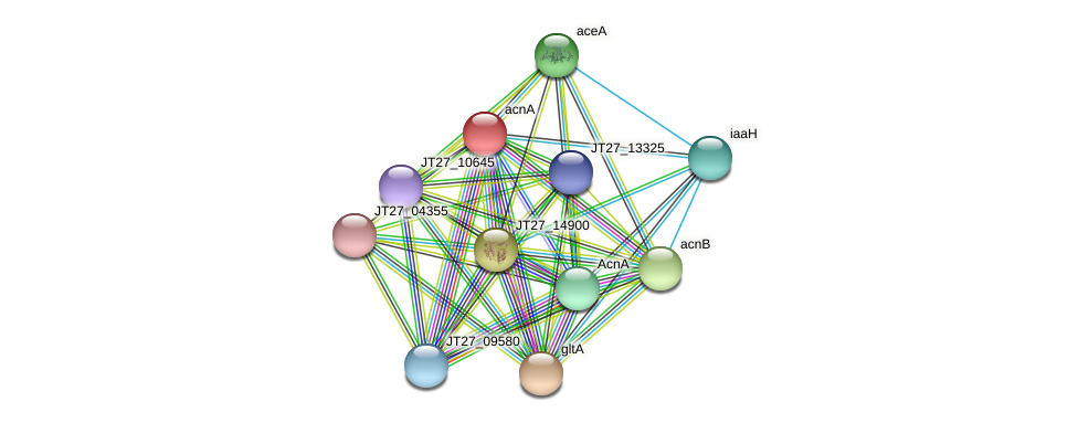 acnA protein (Alcaligenes faecalis) - STRING interaction network