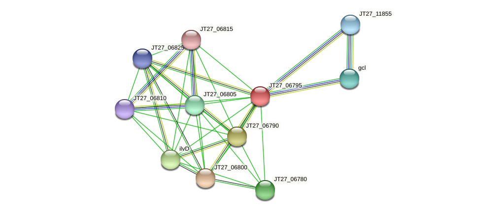 JT27_06795 protein (Alcaligenes faecalis) - STRING interaction network