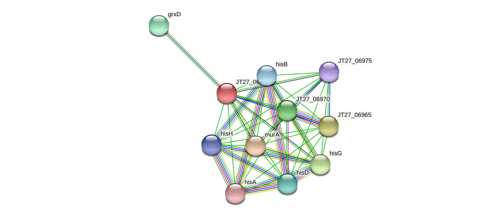 AFA_17135 protein (Alcaligenes faecalis) - STRING interaction network