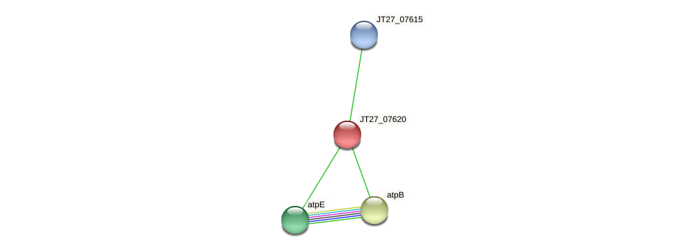 JT27_07620 protein (Alcaligenes faecalis) - STRING interaction network