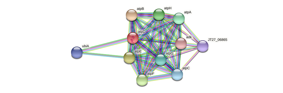atpD protein (Alcaligenes faecalis) - STRING interaction network