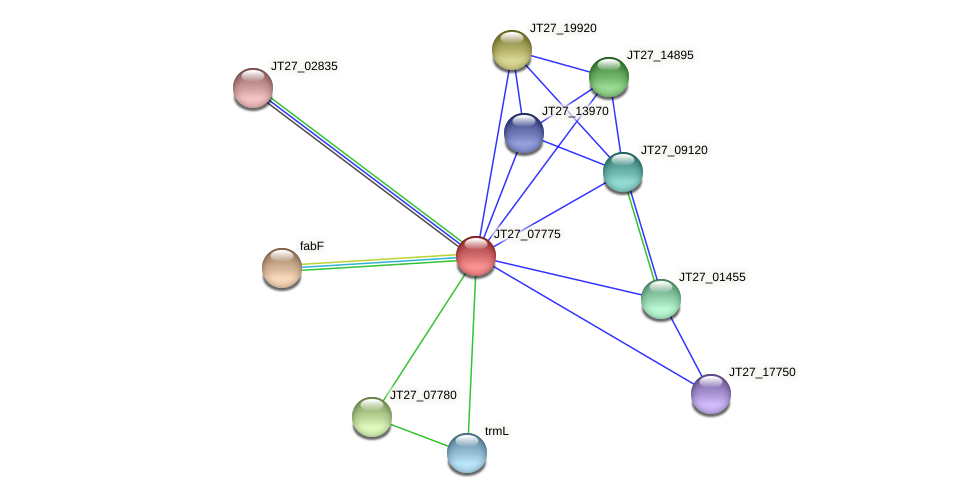 JT27_07775 protein (Alcaligenes faecalis) - STRING interaction network