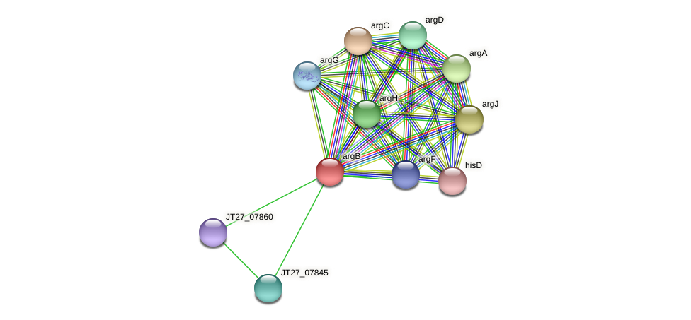 argB protein (Alcaligenes faecalis) - STRING interaction network