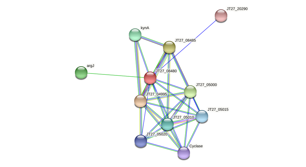 JT27_08480 protein (Alcaligenes faecalis) - STRING interaction network