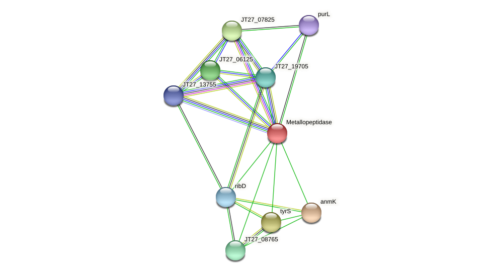 JT27_08755 protein (Alcaligenes faecalis) - STRING interaction network